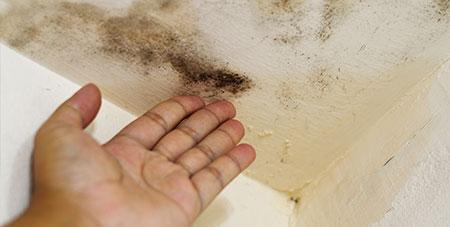 Badkamer Afvoer Lekkage : Door lekdetectie kan de loodgieter snel een lekkage opsporen